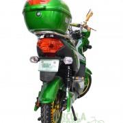Nueva City Verde b
